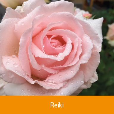 Reiki nach Dr.Usui, Heilarbeit mit Energie, Für Mensch und Tier, auch Fernbehandlung